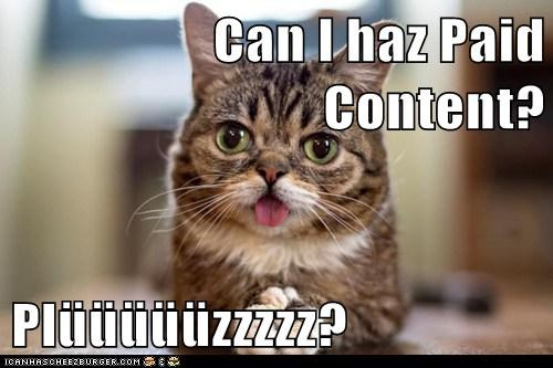 paid content lolcat